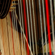 image_harp-strings